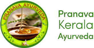 Ayurveda, Kerala, Ayurvedic Massage, Treatment
